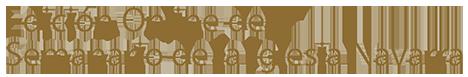 Edición Online del Semanario de la Iglesia Navarra